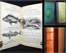 Angeln Sammlung erstellt von Antiquariat Haufe & Lutz