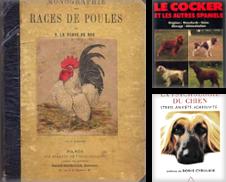 Animaux Faune Art Vétérinaire de Eratoclio