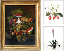 Botanicals Curated by Arader Galleries San Francisco