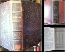 Archäologie Sammlung erstellt von Antiquariat libretto Verena Wiesehöfer