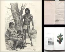 Amerika Sammlung erstellt von Buch & Kunst Antiquariat Flotow GmbH