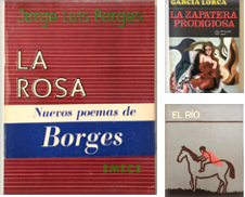 Spanish Literature Proposé par European Books and Media LLC