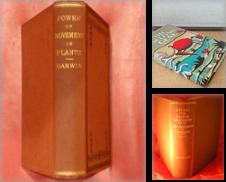 Evolution Curated by Denominator Books (IOBA)