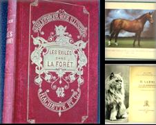 Animali Di Librivari