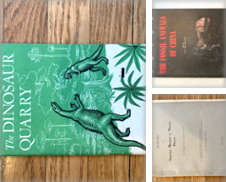 Dinosaurs Curated by Paul Gritis Books