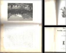 Schweiz Sammlung erstellt von Versandantiquariat K. Rehm