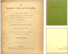 Sintflut Sammlung erstellt von Archiv Fuenfgiebelhaus