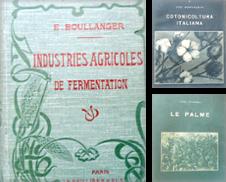 Agrariae cucina Di BOTTEGHINA D'ARTE GALLERIA KÚPROS