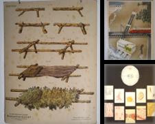 Schulwandbilder Sammlung erstellt von sammelbecken, bär