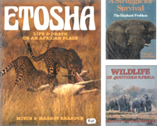 African Wildlife Curated by Eaglestones
