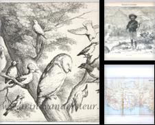 Africa Sammlung erstellt von Antiquariaat Arine van der Steur / ILAB