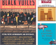 Africa Curated by Booked Experiences Bookstore