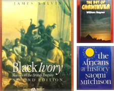 Africa Curated by Wormhole Books