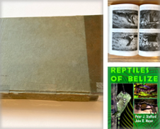 Herpetology Curated by Paul Gritis Books