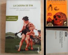 Arqueología de Librería Eleutheria - Ateneo Nosaltres
