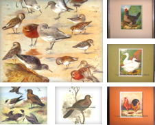 Ornithology Curated by Lowry-James Rare Prints & Books, ABAA