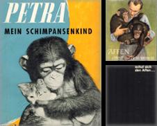 Affen Sammlung erstellt von Clivia Mueller