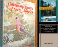 Birds Curated by Aldo's Attic