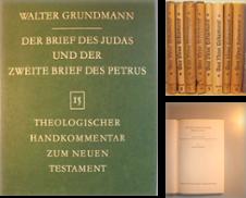 Bibelkommentare zum Neuen Testament Sammlung erstellt von Theologica, Stefanie Kastler
