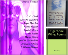 American Poetry Curated by High Park Books