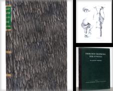 ANATOMIE Sammlung erstellt von Antiquariat Stefan Wulf
