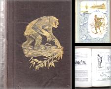 BÜCHER (Reisen) Sammlung erstellt von Signum Antiquariat