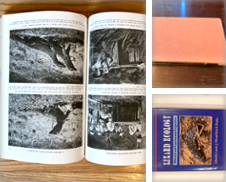 Lizards Curated by Paul Gritis Books