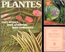 Arbres Et Plantes Proposé par LE GRAND CHENE